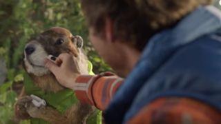 Marmot_Youtube_0208_ftr