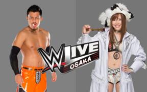 WWE 日本公演 大阪公演 戸澤陽 カイリ・セイン