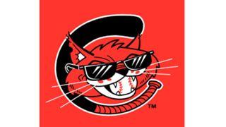 Charleston-Alley-Cats-011716-MiLB-FTR