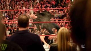 Shane McMahon great stunner down