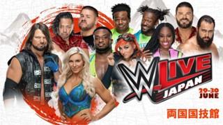 2018年WWE日本公演チケット概要