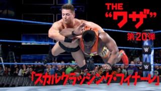WWE スーパースター スカルクラッシング・フィナーレ ザ・ミズ