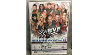 WWE Japan auction Feb 2018