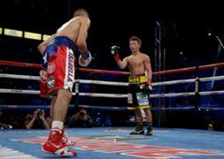 WBA ボクシング バンタム級 井上尚弥 マクドネル