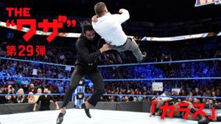 WWE スーパースター ワザ紹介 ジンダー・マハル カラス