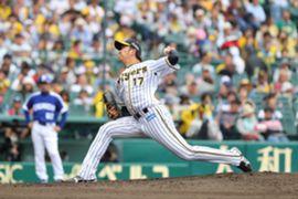 iwasada_tigers